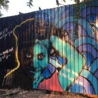 Jan Sahas Foundation with Delhi Street Art 2017 1.jpg